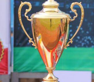 Giải bóng đá Cúp Thăng Long TLE 2014 - TLE Group - Đại lý cung cấp thang máy Mitsubishi chính hãng